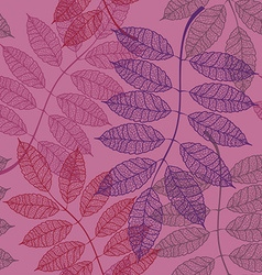 Seamless pattern of rowan leaves vector image