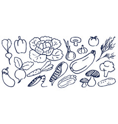 Set hand drawing black and white vegetables vector