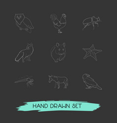 set of zoo icons line style symbols with beetle vector image