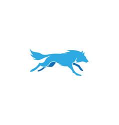 wolf running logo vector image