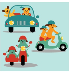 dogs and vehicles vector image