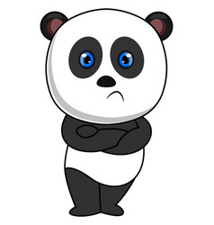 angry panda on white background vector image