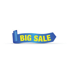 big big sale sign vector image