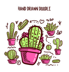 cactus and succulent doodle set vector image