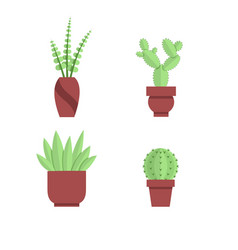 collection of office plants and cacti indoor vector image
