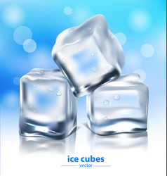 ice cubes on a blue background vector image