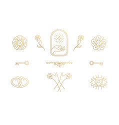 Line elegant decoration design elements set vector