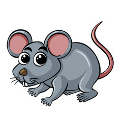 little rat on white background vector image