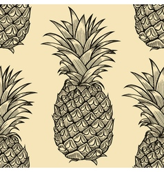 pineapple 213 02 vector image