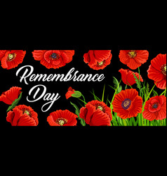 Remembrance day poster with poppies card vector