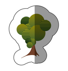 sticker stylized tree icon vector image