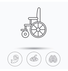 Wheelchair neurology and weight loss icons vector image