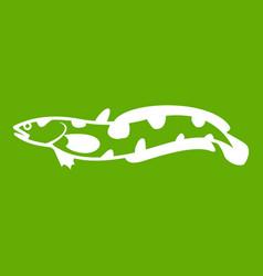 Anarhichas fish icon green vector