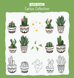 collection cactus plant vector image