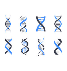 Dna helix patterns colorful vector