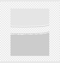 pieces of torn paper on a transparent background vector image