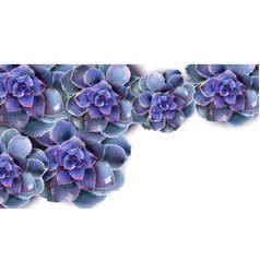 spring banner with blue succulent flower vector image