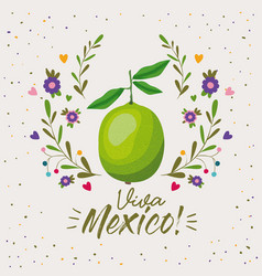 viva mexico colorful poster with lemon fruit vector image