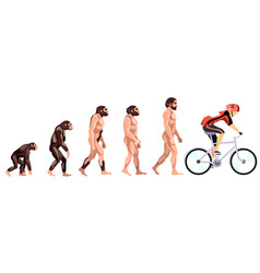evolution of the cyclist vector image vector image