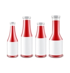 Set of Glass Red Ketchup Bottles with labels vector image