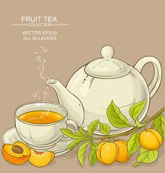 apricot tea vector image