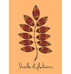 Autumn rowan leaf made of mosaic vector