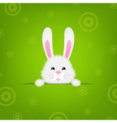 Easter Banner With Rabbit vector