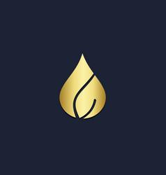 Gold leaf eco logo vector