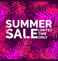 Modern poster summer sale limited time only vector