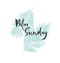 palm sunday card poster banner with palm leaves vector image