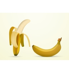 peeled banana vector image