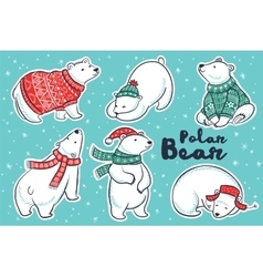 Polar Bears collection in red and green sweater vector