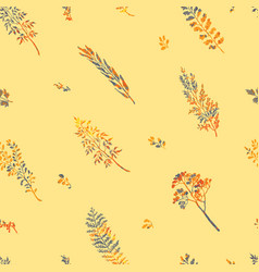 Seamless pattern with herbs plants and flowers vector