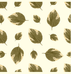 Stylish pattern with autumn leaves leaf fall vector