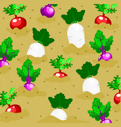 Vegetables garden background vector