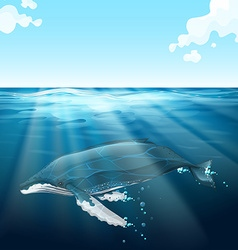 Whale swimming under the blue sea vector