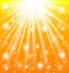 Sun rays and light effects vector image