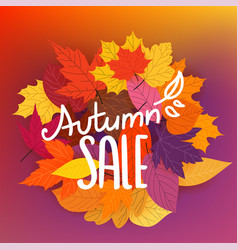 Autumn sale calligraphic logo with color fall vector