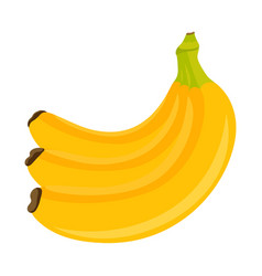 bunch bananas isolated on white vector image