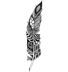 Feather tangle vector
