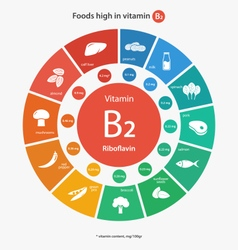 Foods high in vitamin B2 vector image