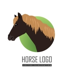 Horse in Flat Design vector image
