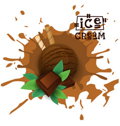 ice cream chocolate ball dessert choose your taste vector image