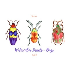 Set of hand painted watercolorbugs vector image