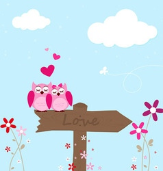Two pink owl in love vector image