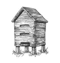 Wooden beehive apiary on grass apiculture vector