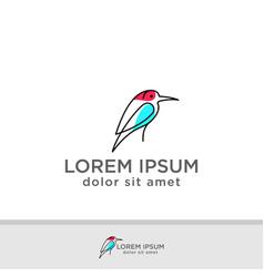 birds dove pigeon logo template vector image