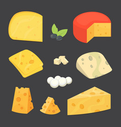 cheese types cartoon style vector image
