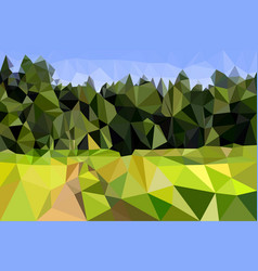 Field and edge of the forest with a road light vector