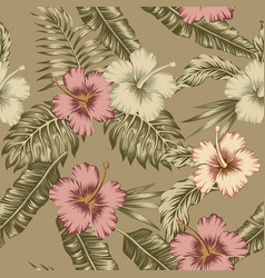 flowers hibiscus abstract brown color tropical vector image